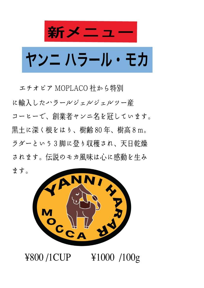 ヤンニハラールモカのコピー-のコピー.jpg